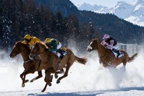 Elite Escortservice St. Moritz und das White Turf