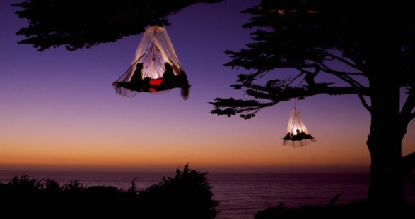 Tree Camping mit VIP Escort