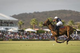 Polo-Events mit Elite Escort